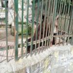 IMG_20120916_134458