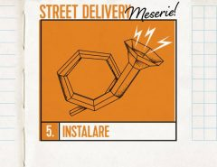 Street Delivery Meserie (10-12 iunie 2016)